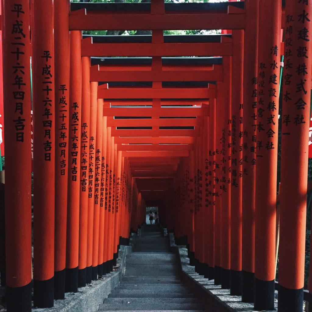 Torii Gates in Tokyo